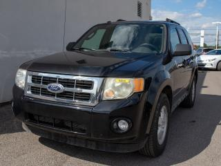 Used 2010 Ford Escape XLT 4X4 SIÈGES CHAUFF TOIT OUVRANT CUIR *BAS KM* for sale in Mirabel, QC