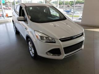 Used 2015 Ford Escape 4 portes SE, Traction avant for sale in Montréal, QC