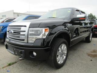 Used 2013 Ford F-150 XLT for sale in Tillsonburg, ON