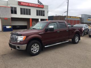 Used 2010 Ford F-150 XLT for sale in Edmonton, AB