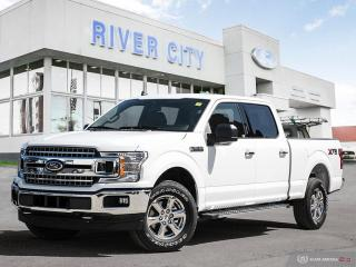 New 2019 Ford F-150 XLT for sale in Winnipeg, MB