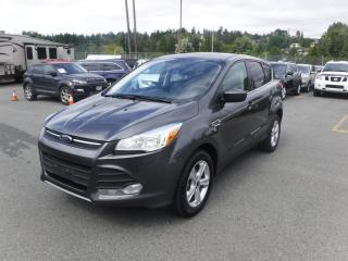 Used 2015 Ford Escape Ecoboost SE 4WD for sale in Burnaby, BC