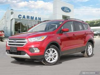 Used 2019 Ford Escape SEL for sale in Carman, MB