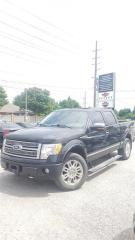 Used 2010 Ford F-150 PLATINUM for sale in Cambridge, ON