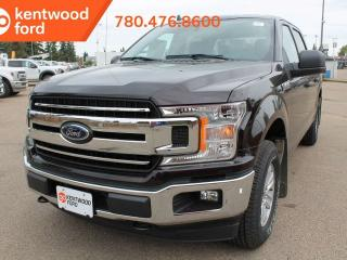 Used 2019 Ford F-150 XLT 4x4 SuperCrew Cab Styleside 145.0 in. WB for sale in Edmonton, AB