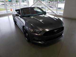 Used 2015 Ford Mustang EcoBoost haut niveau cabriolet 2 portes for sale in Montréal, QC