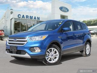 Used 2019 Ford Escape SE for sale in Carman, MB