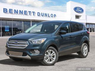 Used 2019 Ford Escape SE for sale in Regina, SK