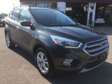2017 Ford Escape SE/SYNC3/TOUCHSCREEN