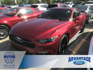 Used 2015 Ford Mustang EcoBoost Premium Leather Heated / Cooled Seats for sale in Calgary, AB