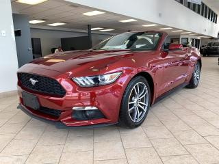 Used 2016 Ford Mustang Convertible Ecoboost Premium Cuir Mags for sale in Pointe-Aux-Trembles, QC