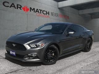 Used 2016 Ford Mustang EcoBoost / LEATHER / NO ACCIDENTS for sale in Cambridge, ON