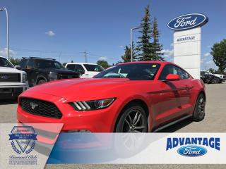 Used 2017 Ford Mustang EcoBoost Bucket Seats - A/C - Reverse Camera for sale in Calgary, AB