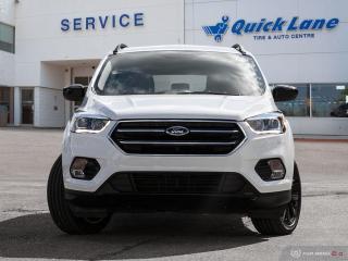 New 2019 Ford Escape SE for sale in Winnipeg, MB