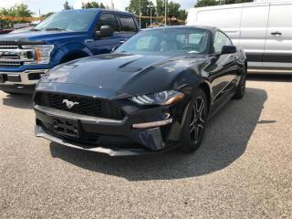 Used 2019 Ford Mustang EcoBoost for sale in London, ON