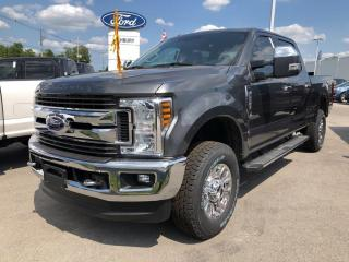 Used 2019 Ford F-250 Super Duty SRW XLT for sale in London, ON