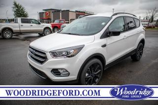 Used 2019 Ford Escape SE for sale in Calgary, AB