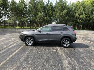 Used 2019 Jeep CHEROKEE TRAILHAWK ELITE 4WD for sale in Cayuga, ON