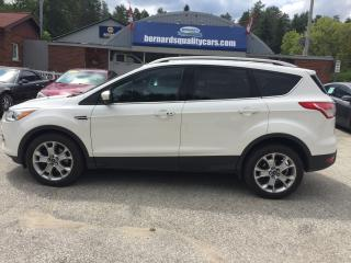 Used 2014 Ford Escape Titanium for sale in Flesherton, ON
