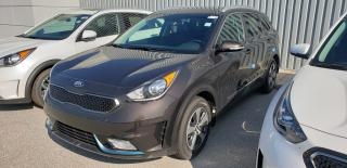 Used 2019 Kia NIRO EX Premium for sale in Owen Sound, ON