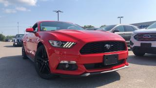 Used 2017 Ford Mustang 2.3l Ecoboost Premium Reverse  Camera for sale in Midland, ON