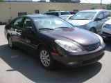 Photo of Purple 2003 Lexus ES 300