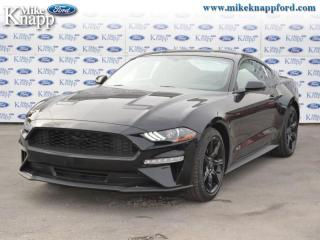 New 2019 Ford Mustang EcoBoost  - Navigation - SiriusXM for sale in Welland, ON