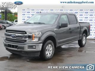 New 2019 Ford F-150 XLT for sale in Welland, ON