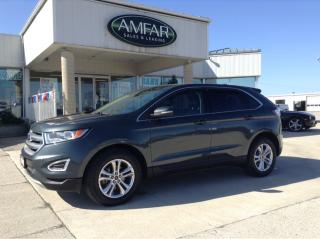 Used 2015 Ford Edge SEL / ROOF / LEATHER / NO PAYMENTS FOR 6 MONTHS for sale in Tilbury, ON