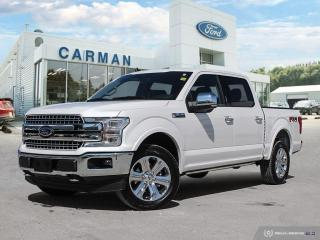 New 2019 Ford F-150 Lariat for sale in Carman, MB