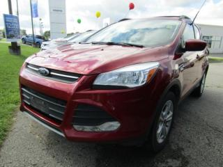 Used 2013 Ford Escape SE for sale in Tillsonburg, ON