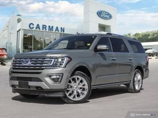 New 2019 Ford Expedition Limited MAX for sale in Carman, MB
