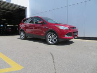 Used 2016 Ford Escape 4WD 4DR TITANIUM for sale in Hagersville, ON