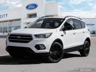 Used 2019 Ford Escape SE for sale in Winnipeg, MB