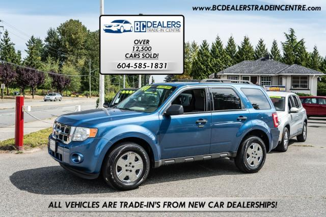 2009 Ford Escape XLT AWD, Local, No Accidents, iPod + AC, Clean!