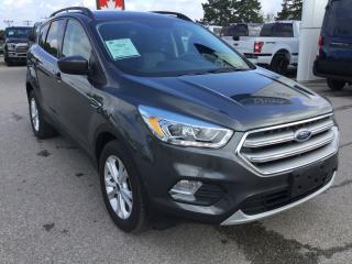 Used 2017 Ford Escape SE | FWD | Accident Free | Heated Seats for sale in Harriston, ON
