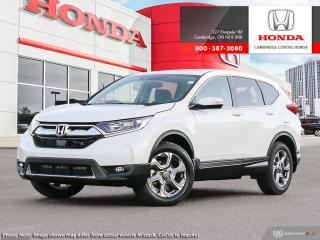 Used 2019 Honda CR-V EX for sale in Cambridge, ON