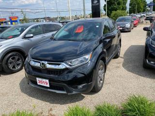 Used 2019 Honda CR-V EX for sale in Waterloo, ON
