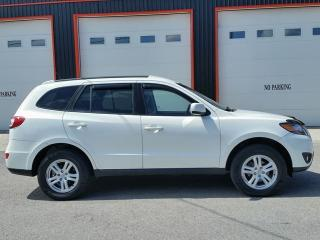 Used 2010 Hyundai Santa Fe GL for sale in Jarvis, ON