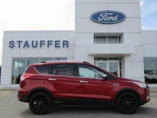 Used 2015 Ford Escape SE for sale in Tillsonburg, ON