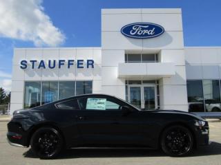 Used 2019 Ford Mustang GT for sale in Tillsonburg, ON
