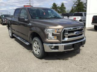 Used 2016 Ford F-150 XLT | Supercrew | 4X4 | Rear View Camera for sale in Harriston, ON