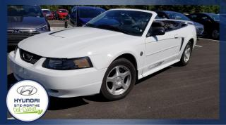 Used 2004 Ford Mustang Cabriolet 2 portes for sale in Val-David, QC