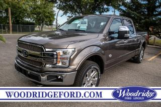 Used 2019 Ford F-150 King Ranch for sale in Calgary, AB