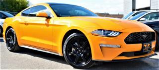 Used 2019 Ford Mustang |WARRANTY|PUSH START|BACK CAM|SYNC for sale in Brampton, ON