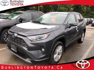 Used 2019 Toyota RAV4 Hybrid Limited for sale in Burlington, ON
