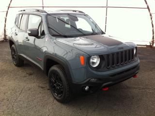 Used 2018 Jeep Renegade Trailhawk for sale in Ottawa, ON
