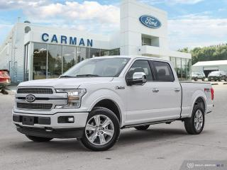 New 2019 Ford F-150 PLATINUM for sale in Carman, MB