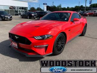 Used 2019 Ford Mustang GT Fastback  - One owner - Local for sale in Woodstock, ON