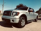 Photo of Ingot Silver Metallic 2011 Ford F-150